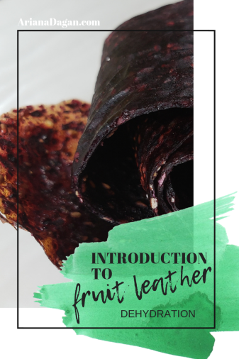 Introduction to Fruit Leather by Ariana Dagan